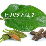 ヒハツのダイエット効果とは?気になる成分や健康への影響とは?