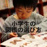 小学生の好奇心を伸ばすためには?図鑑の選び方や親の関わりポイント